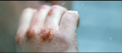 Hunger. The bruised hands of an H-block prison guard.