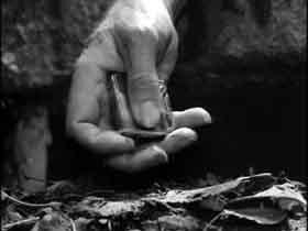Hands16
