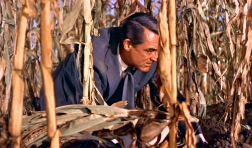The cornfield sequence: North by Northwest