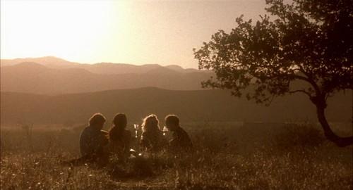sideways-autumnal-picnic